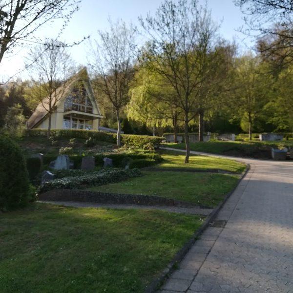 Baumbestattungen auf dem Dirminger Friedhof wären eine echte Alternative