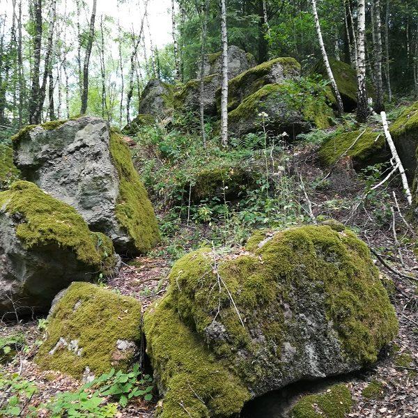 """Meine Wanderung durch das Naherholungsgebiet """"Steinrutsch"""" – Von alten Steinen auf neuen Wegen"""