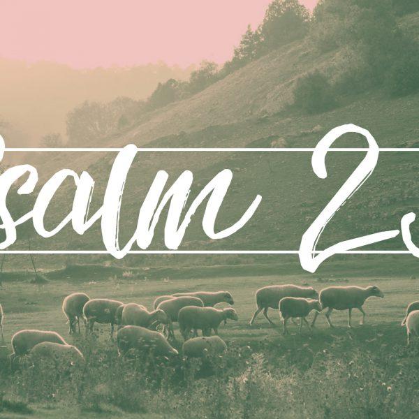 Vom Psalm 23 uff Saarländisch