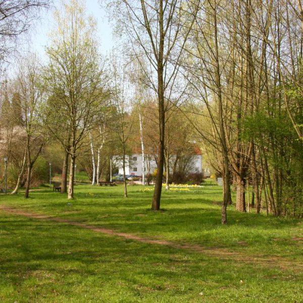 """Brennpunkt """"Brühlpark"""" – Tropfen auf den heißen Stein oder """"Kick-off"""" in eine bessere Zeit"""