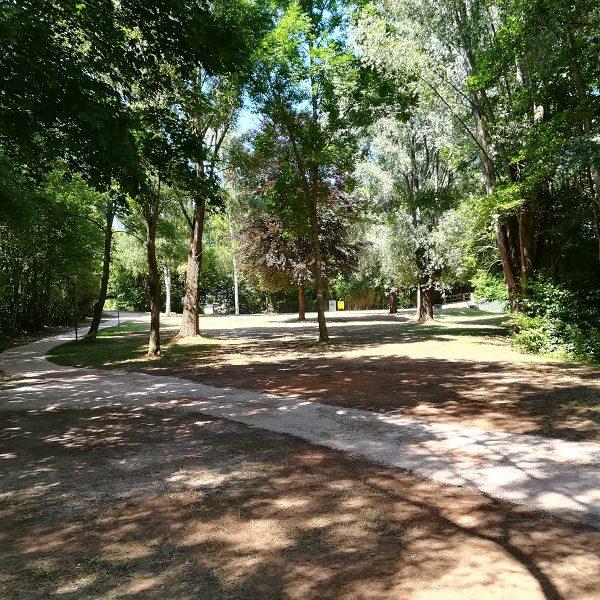 Neuanfang im Dirminger Brühlpark - Von der Mülldeponie zur Wohlfühloase